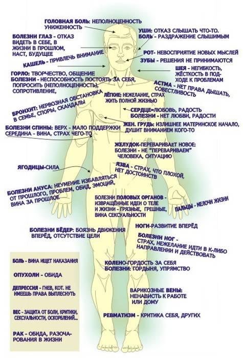 какие паразиты живут в толстом кишечнике человека